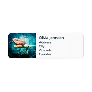 Wonderful  Sea Turtle Ocean Life Turquoise Sea Return Address Label