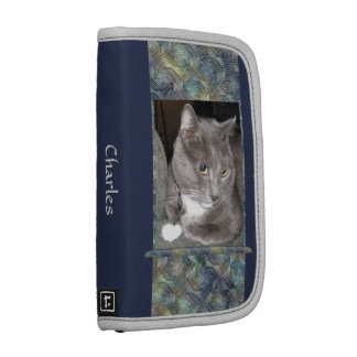Wonderful Silver-gray Cat Planners