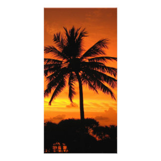 Wonderful Sunset Photo Card