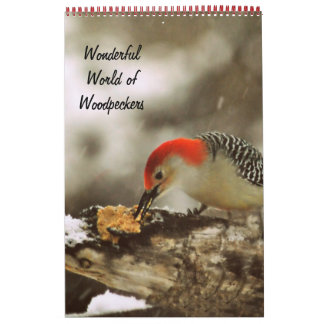 Wonderful World of Woodpeckers Two Page Calendar