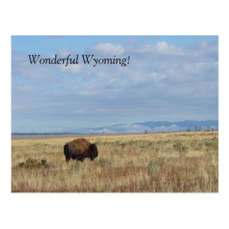 Wonderful Wyoming! Postcard