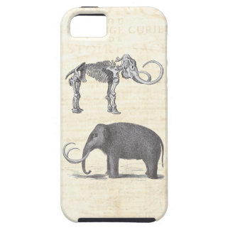 Wonderfully Strange Woolly Mammoth Skeleton Unique iPhone 5 Cover