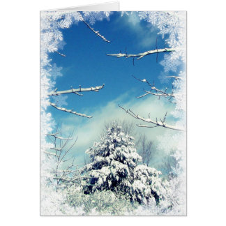 Wonderland Winter Solstice Greeting Card