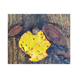 Wood Acorn Autumn Leaf Nature Photography Canvas Print