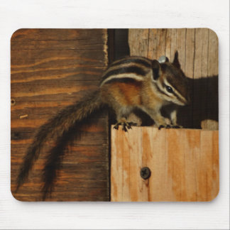 wood and chipmunk mouse pads