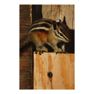 wood and chipmunk personalized stationery