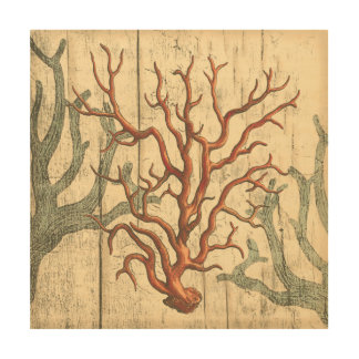 Wood and Small Coral Wood Wall Decor