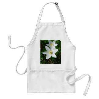 Wood Anemone In Grass Close Up Apron