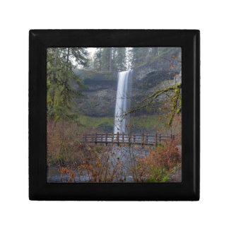 Wood Bridge on Hiking Trail at Silver Falls OR Gift Box