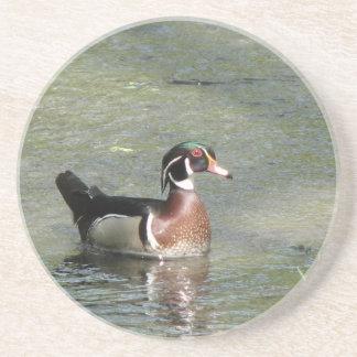 Wood Duck Drink Coasters