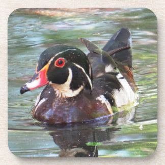 Wood Duck Coaster