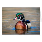 Wood Duck in a pond Card