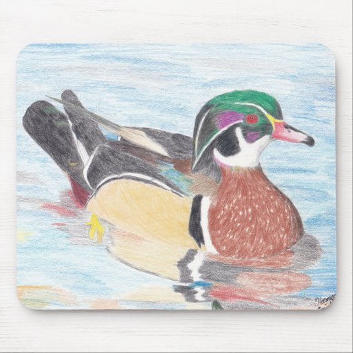 Wood Duck Reflections Mousepad