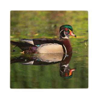 Wood Duck Wood Coaster