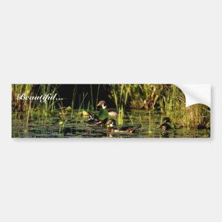 Wood Ducks Bumper Stickers