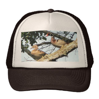Wood Ducks Cap Trucker Hats