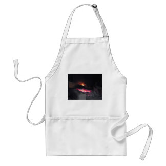 Wood fire flame heat spires burning in fireplace standard apron
