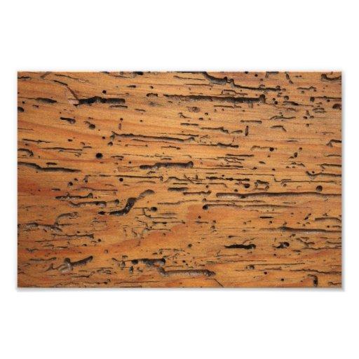 Wood Grain Photo Print
