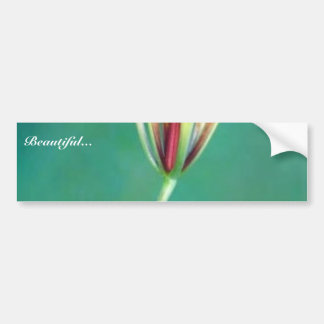 Wood lily bumper sticker