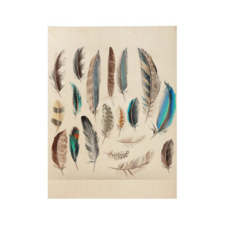 Wood poster with Feathers
