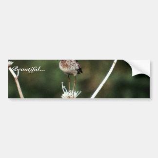 Wood Sandpiper Bumper Sticker