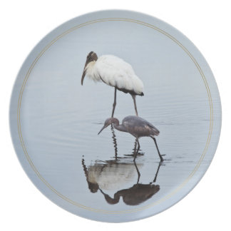 Wood Stork and Blue Heron Wading Plate