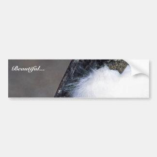 Wood Stork Bumper Stickers