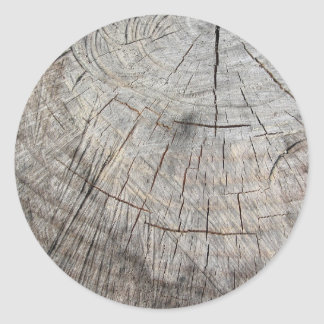Wood texture of cut pine tree trunk classic round sticker