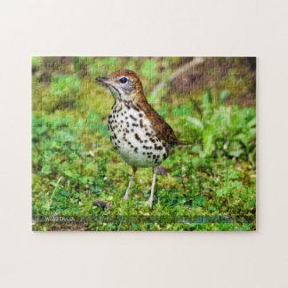 Wood Thrush Bird Puzzle