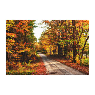 Wood trail with fall foliage gallery wrapped canvas