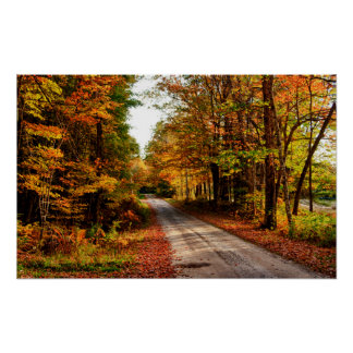 Wood trail with fall foliage posters