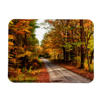 Wood trail with fall foliage rectangular photo magnet