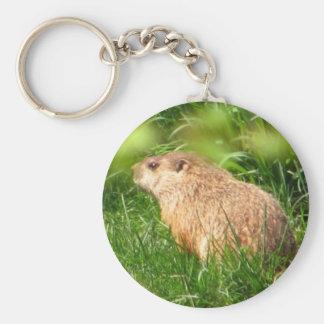 Woodchuck ~ keychain