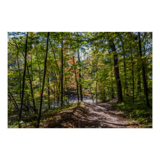 Wooded Autumn Path Poster