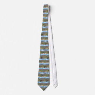 Wooded scenery with blue sky. neck ties