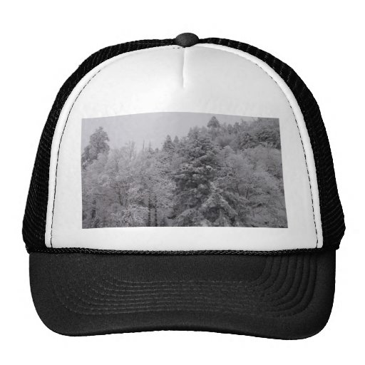 Wooded Slopes Trucker Hats