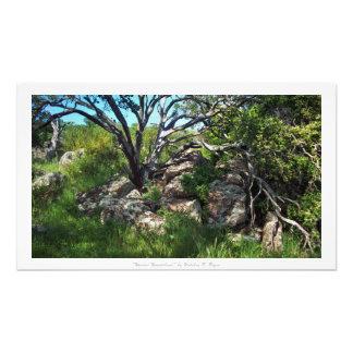 """Wooded Wonderland,"" Nature Decor Photographic Print"