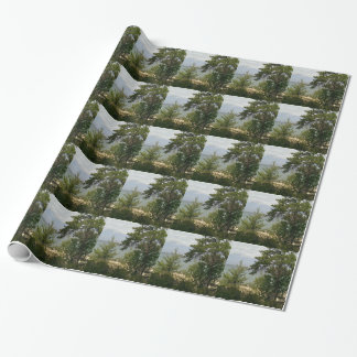 wooden beach wrapping paper
