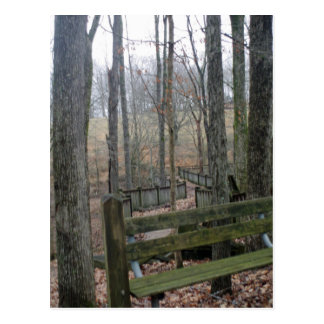 Wooden Bench Postcard