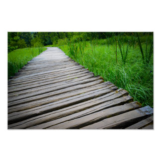 Wooden Boardwalk Hiking Trail Poster