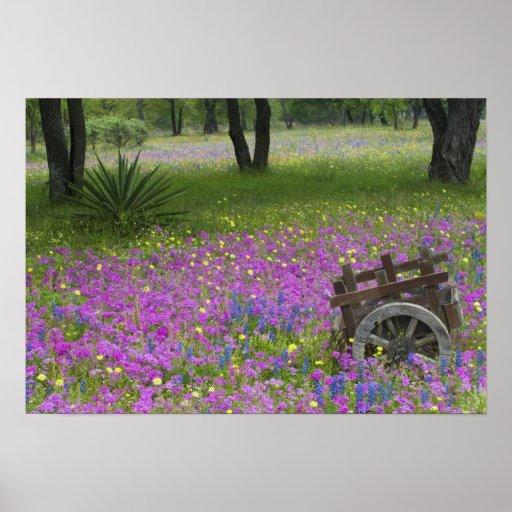 Wooden Cart in field of Phlox, Blue Bonnets Print