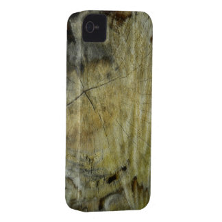 Wooden Cracked Stump iPhone 4 Case-Mate Cases
