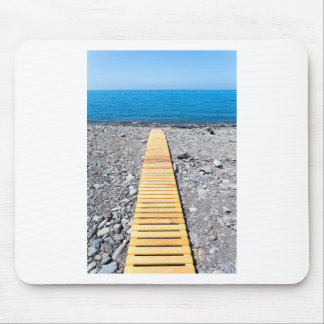 Wooden footpath on beach leading to portuguese sea mouse pad