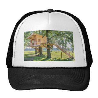 Wooden tree house in oak tree with grass cap
