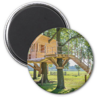 Wooden tree house in oak tree with grass magnet