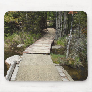 Wooden Walkway Over Water Mouse Pad