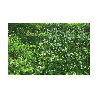 Woodland Flowers Canvas Prints