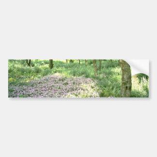 Woodland, Hebden Bridge, West Yorkshire  flowers Bumper Sticker