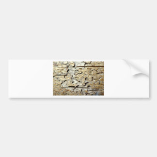 Woodland Recycled Bumper Sticker