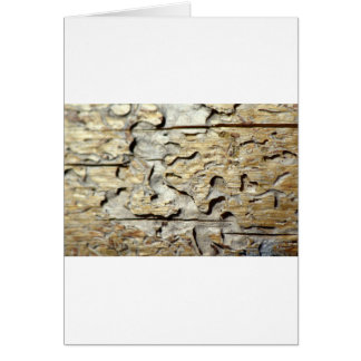 Woodland Recycled Card